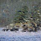 Coastal Winter Storm  by TerrillWelch