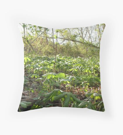 Community Throw Pillow