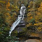 Dingmans Falls In Autumn by Stephen Vecchiotti
