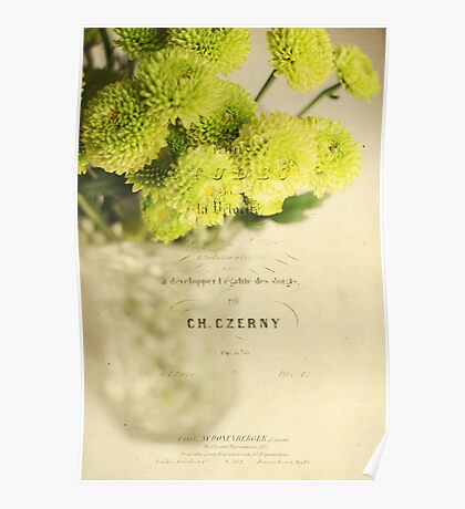 flowers on the table Poster