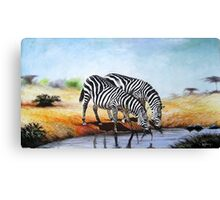 African Zebras at a water stream Canvas Print