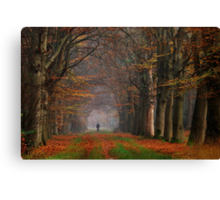 A lonely walker came my way Canvas Print