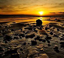 Beach Morning Glory by Svetlana Sewell