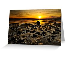 Beach Morning Glory Greeting Card