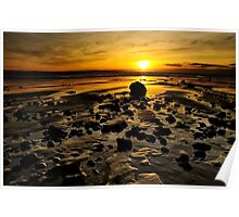 Beach Morning Glory Poster