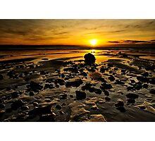 Beach Morning Glory Photographic Print