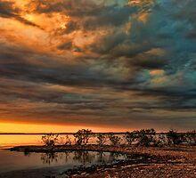 A Most Beautiful Night by Carolyn  Fletcher