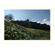 White and golden daffodils Art Print