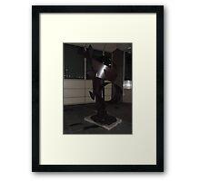 Sculpture/Millienium Mile Walk -(030112)- Digital photo Framed Print