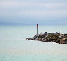 Coastal Mist ~ Lyme Regis by Susie Peek