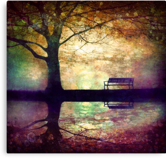 A Place to Rest in the Dark by Tara  Turner