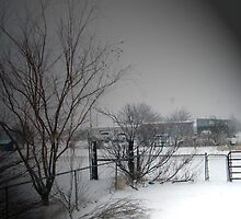 West Texas Winter by R&PChristianDesign &Photography