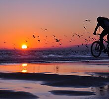 Cycling to Fly by João  Coutinho