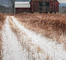 Old Rustic Barn and Snow by Michael Mill