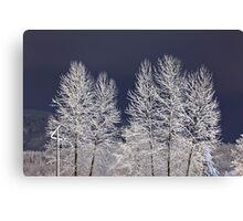 Frozen Nightscape Canvas Print