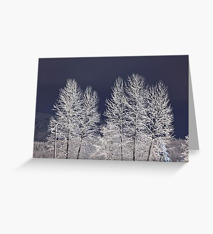 Frozen Nightscape Greeting Card