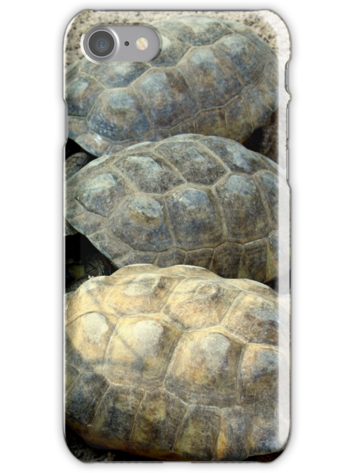 Tortoise Shell (iPhone Case) by AuntDot