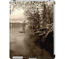 A peaceful scene iPad Case/Skin