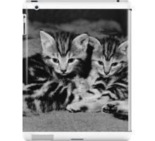 A beautiful pair of tabby kittens  iPad Case/Skin