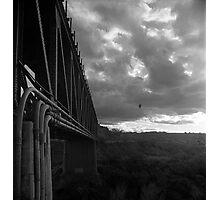 Bridge and Bird Photographic Print