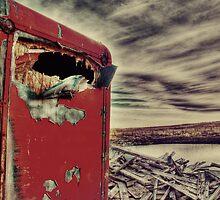 Apocalyptic   by Lisa Knechtel