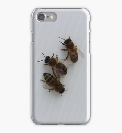 3 Bees iPhone Case/Skin