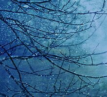 Winter Blues by TraceyTilsonArt