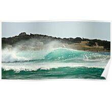 Tassies Surfing Finest Poster