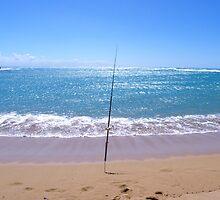 Fishing by winterland