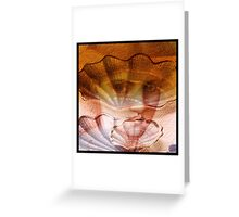 Living shells Greeting Card