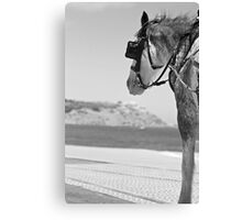 Time to enjoy the view Canvas Print