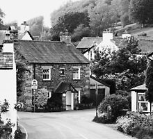 Beatrix Potter Country ~ Near Sawrey, Cumbria by artwhiz47