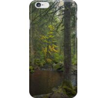 Fairy Realm iPhone Case/Skin