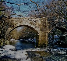 Dartmoor River Dart Holne New Bridge Winter Scene by richard wolfe