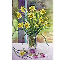 Daffodils in a jug Photographic Print