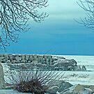 """""""Winter Blues"""" by kkphoto1"""