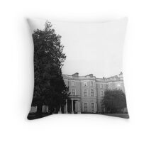 Farmleigh House, Phoenix Park, Dublin Throw Pillow