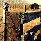 Fence...Middleton, Idaho by Diane Arndt