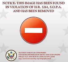 Image removed due to violations by the US government by Vladyslav Varvanin