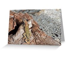 Lizard camouflage. Greeting Card