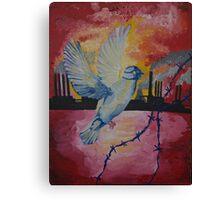 Dove mask Canvas Print