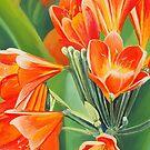 Orange Flowers by Graeme  Stevenson