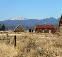 Whitney - Ghost Town of the Blue Mountains by © Betty E Duncan ~ Blue Mountain Blessings Photography