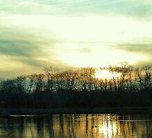 Beautiful Splendor by Mahnewl