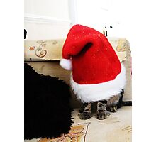 Santa 4 Paws Photographic Print