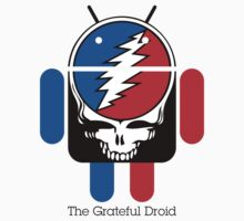 The Grateful Droid by David Benton