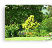 A Gap in a World of Green Canvas Print