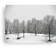 Nature's Own Black and White Canvas Print