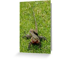 The water dragon Greeting Card
