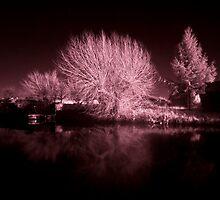 Loughborough Canal IR by Yhun Suarez